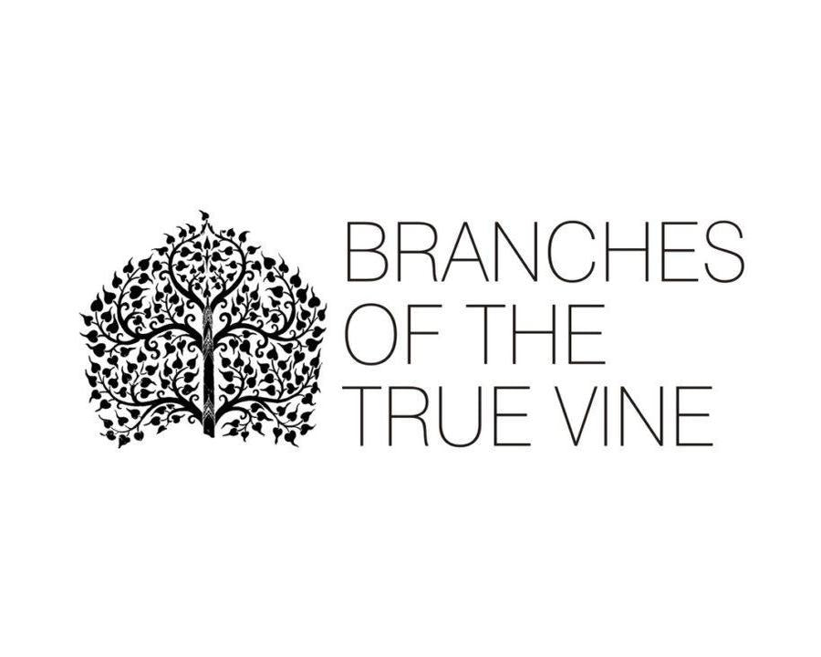 BRANCHES OF THE TRUE VINE2