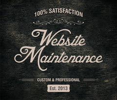 Website work with SSL, Security and encryption - Webvizion Digital - No.1 Web Services Store