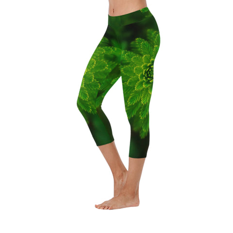 Fern Fancy Low Rise Capri Leggings - dianadu-designs