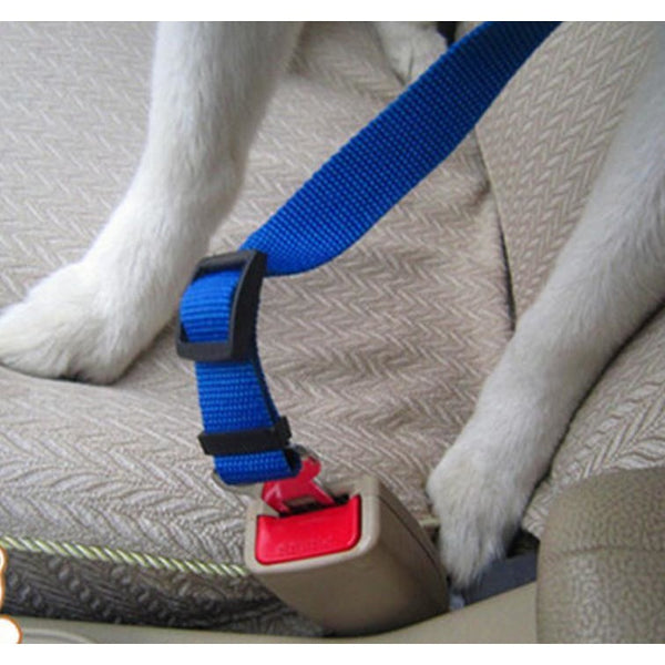 Pet Safety Car Seat Belt Leashes - TrendiaStore