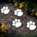 """WALK ME DOWN"" SOLAR POWERED PAW PRINT LED LIGHTS - TrendiaStore"