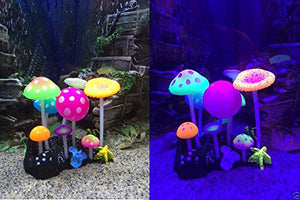 UnicLife Aquarium Decoration Glowing Effect Artificial Mushroom-Compare