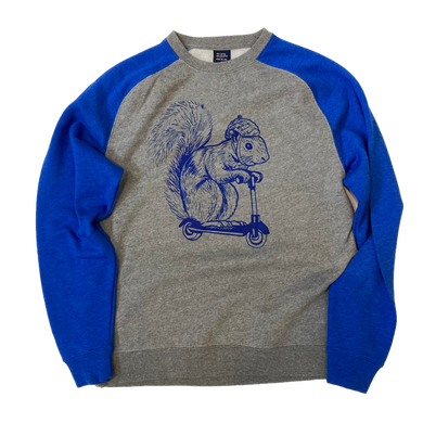 Squirrel on a Bird Sweatshirt