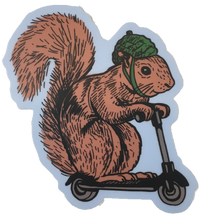 squirrel on a bird sticker