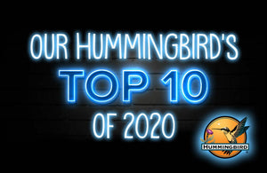 Our Bird's TOP 10 of 2020