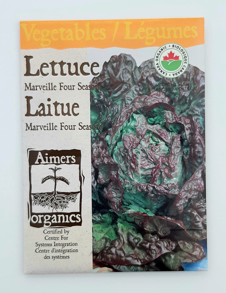 Lettuce 'Marveille Four Seasons', Aimers Organic