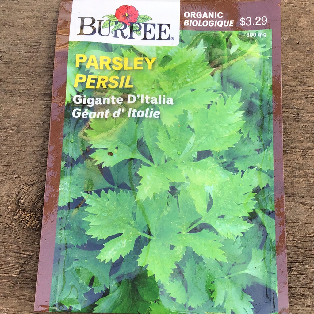 Organic Parsley, Burpee
