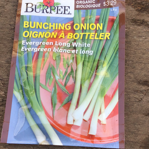 Organic Bunching Onion, Burpee