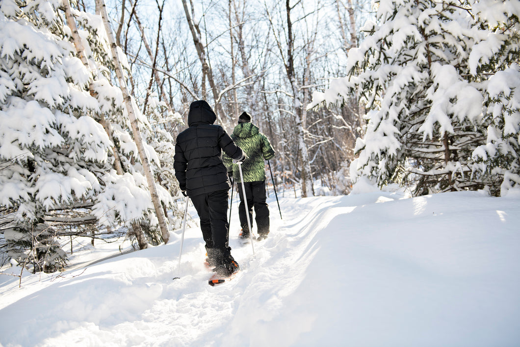 Randonnée d'interprétation de la nature en raquette / Snowshoe Nature Interpretation Hike