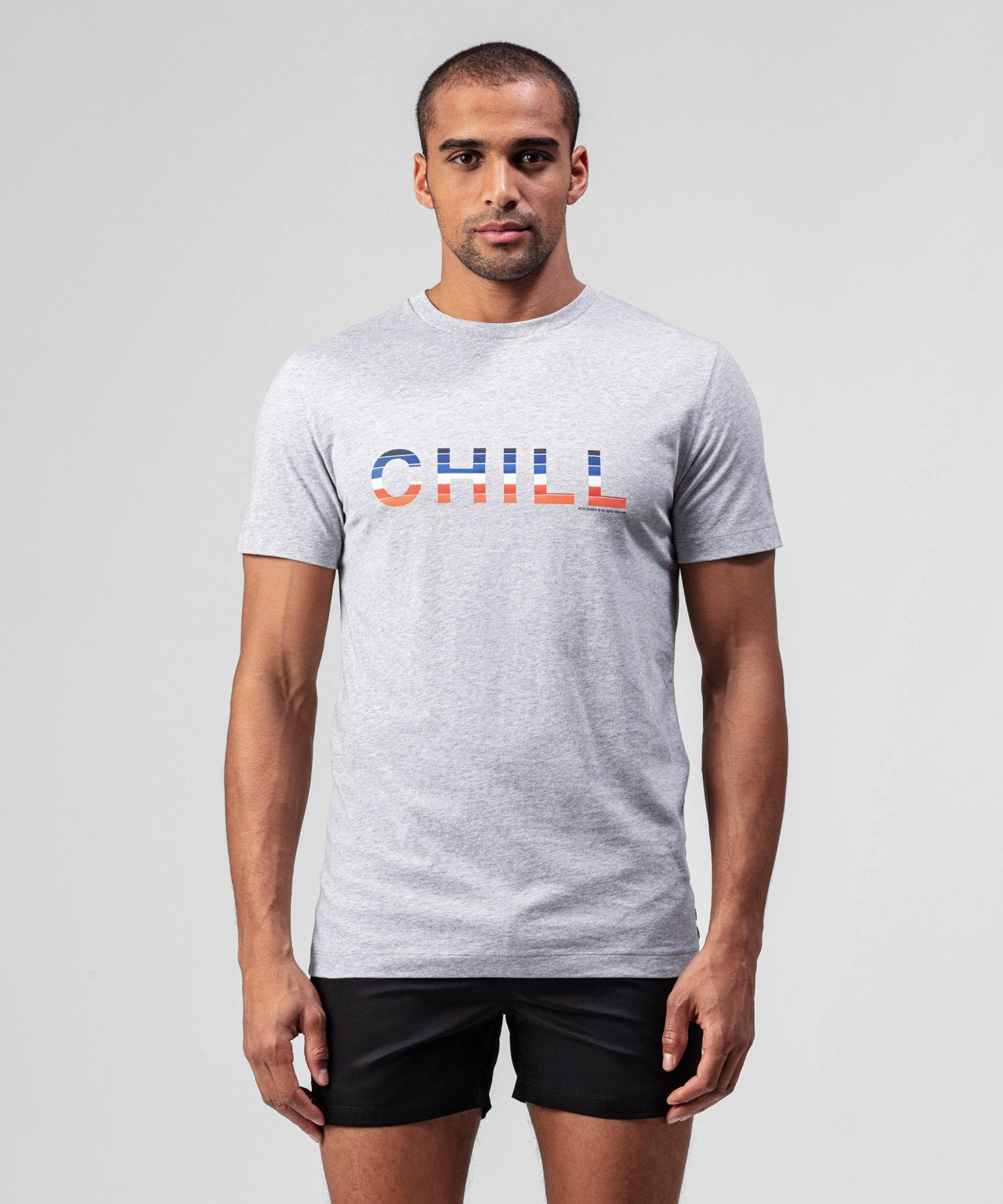 T-Shirt CHILL - grey melange