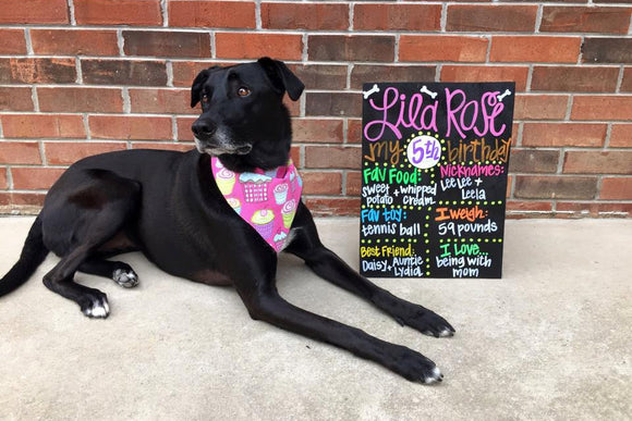 HAND-PAINTED Custom Birthday Chalkboard Sign, Birthday Sign, Birthday Board, Wedding Sign, Photo Shoot Prop, Hand-Painted Sign (16x20