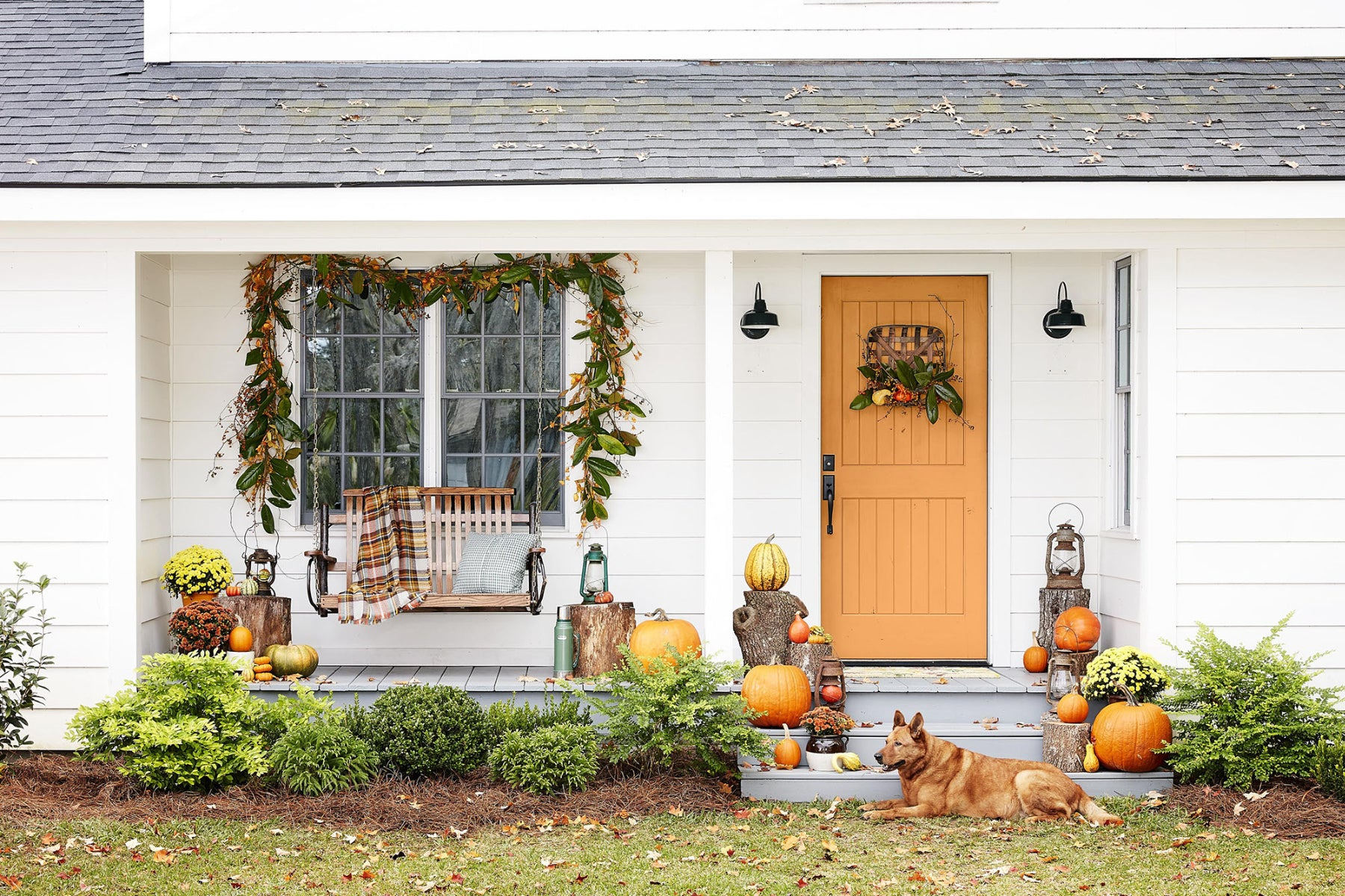 Bring The Outdoors In: Transitioning Plants For Fall