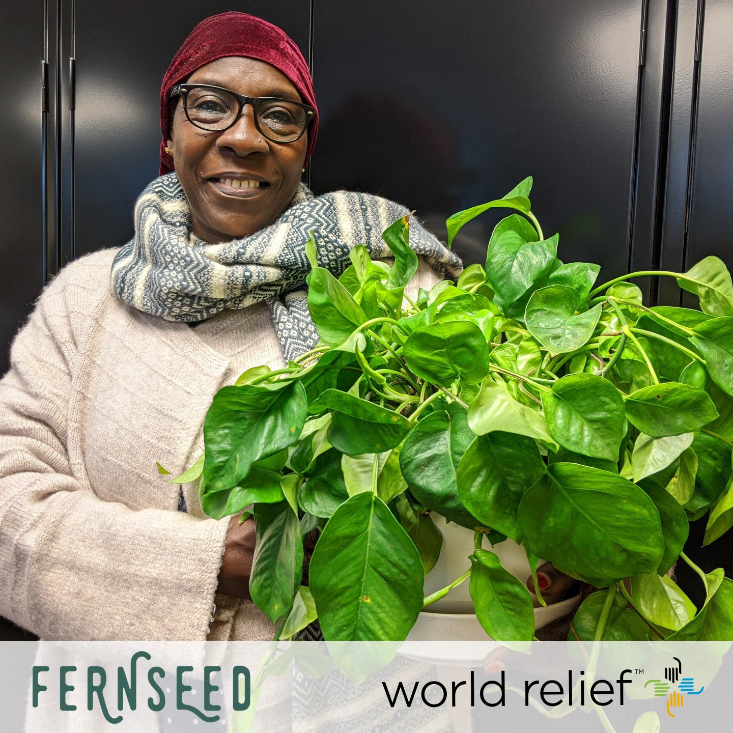 Donation Spotlight - The Fernseed and Seattle World Relief Foundation