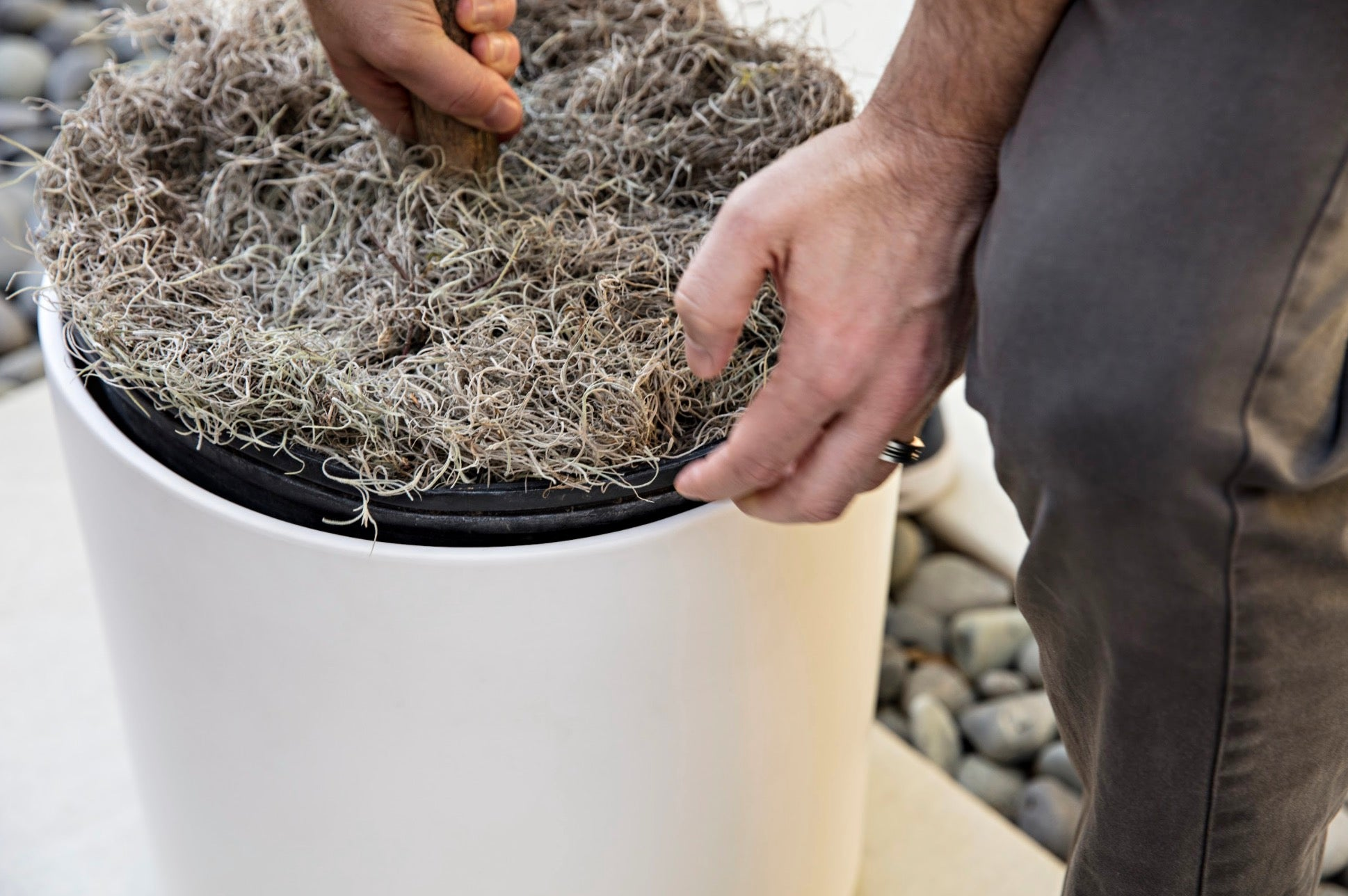 Grower Pots vs. Direct Potting with Revival Ceramics