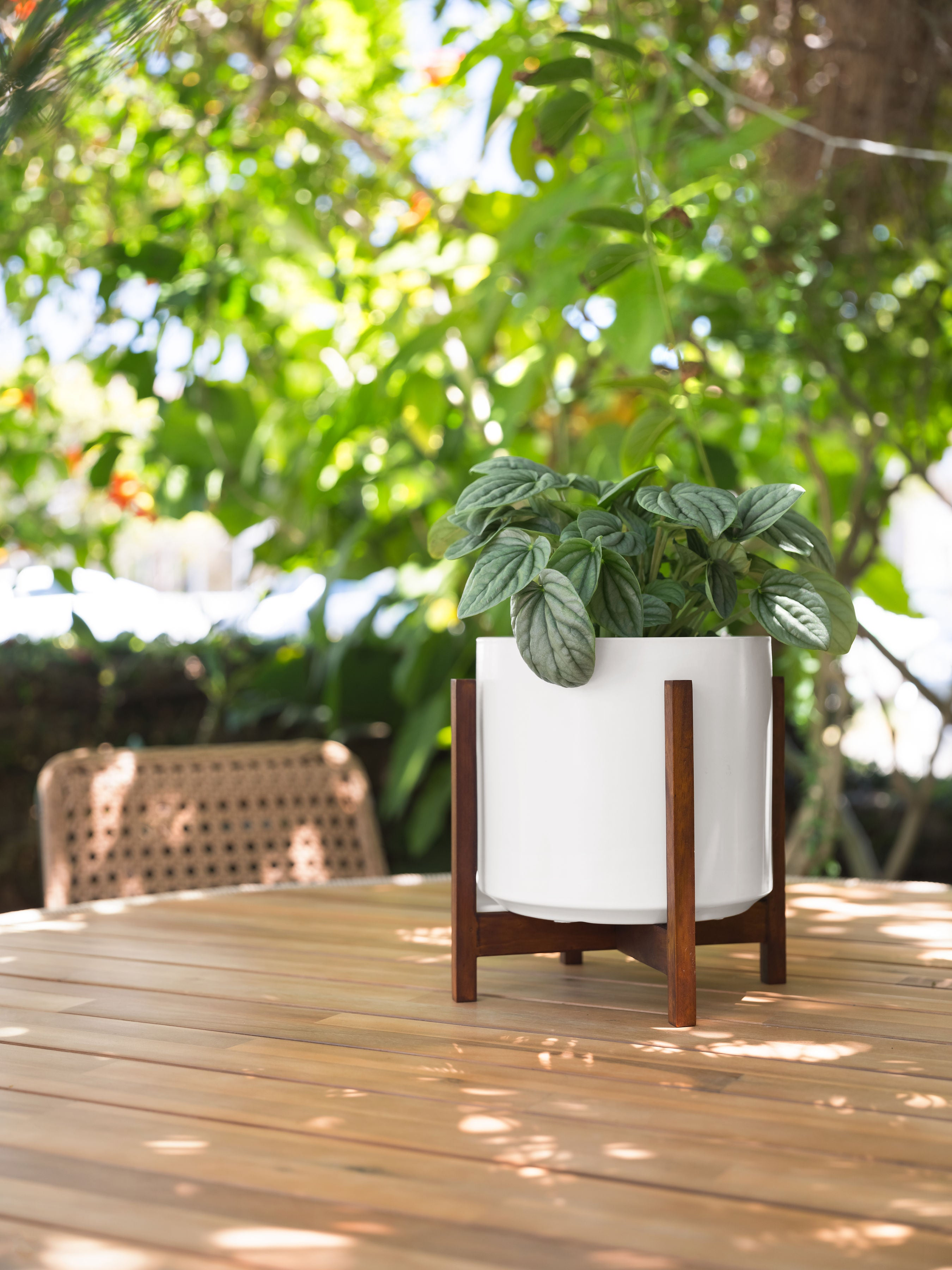 """Photo of White Solid Goods 8"""" Ceramic Cylinder Planter with Plant Stand"""