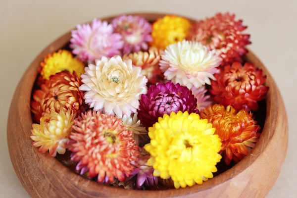 Sun Dried Flowers - 12 Pack