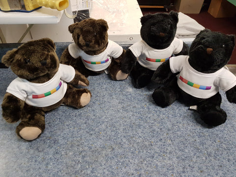 Teddy Bear Gay Pride