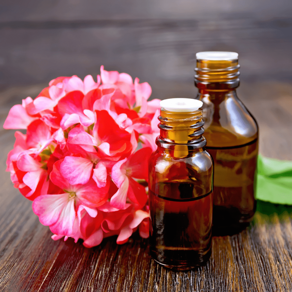 Skincare Spotlight: Skincare Benefits of Geranium Essential Oil