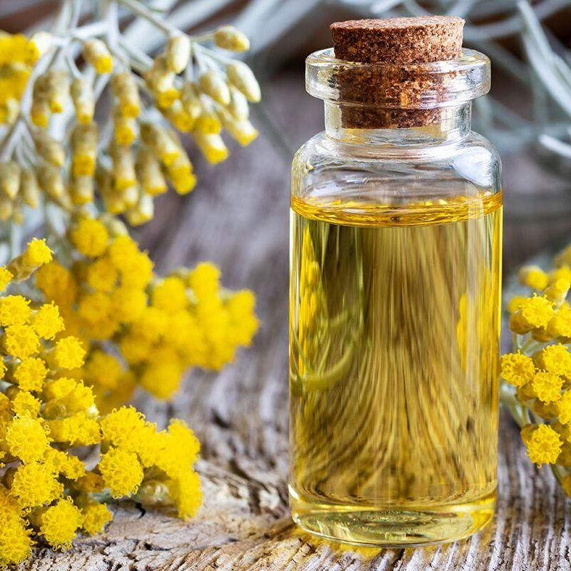 Helichrysum (Immortelle) Essential Oil surrounded by beautiful Helichrysum flower blossoms