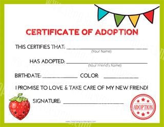 Strawberry Kawaii Cuddler® Adoption Certificate