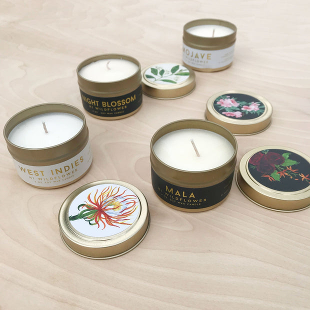 Night Blossom Travel Tin Exotic Soy Candle Jasmine Grandiflorum Neroli Blossom Botanicals Floral Hi Wildflower Shop Jupiter Goods