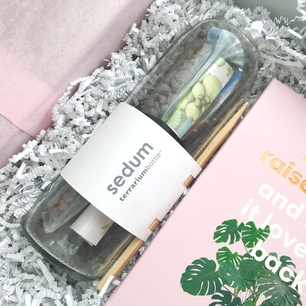 The FLORA ~ Plant Lover's Gift Set
