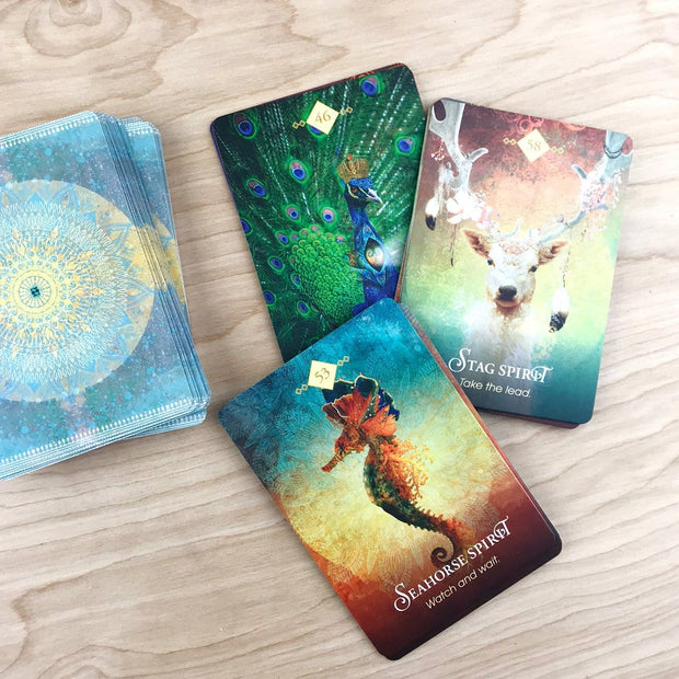 The Spirit Animal Oracle A 68 Card Deck and Guidebook Teachers and Healers by Colette Baron Reid Shop Jupiter Goods