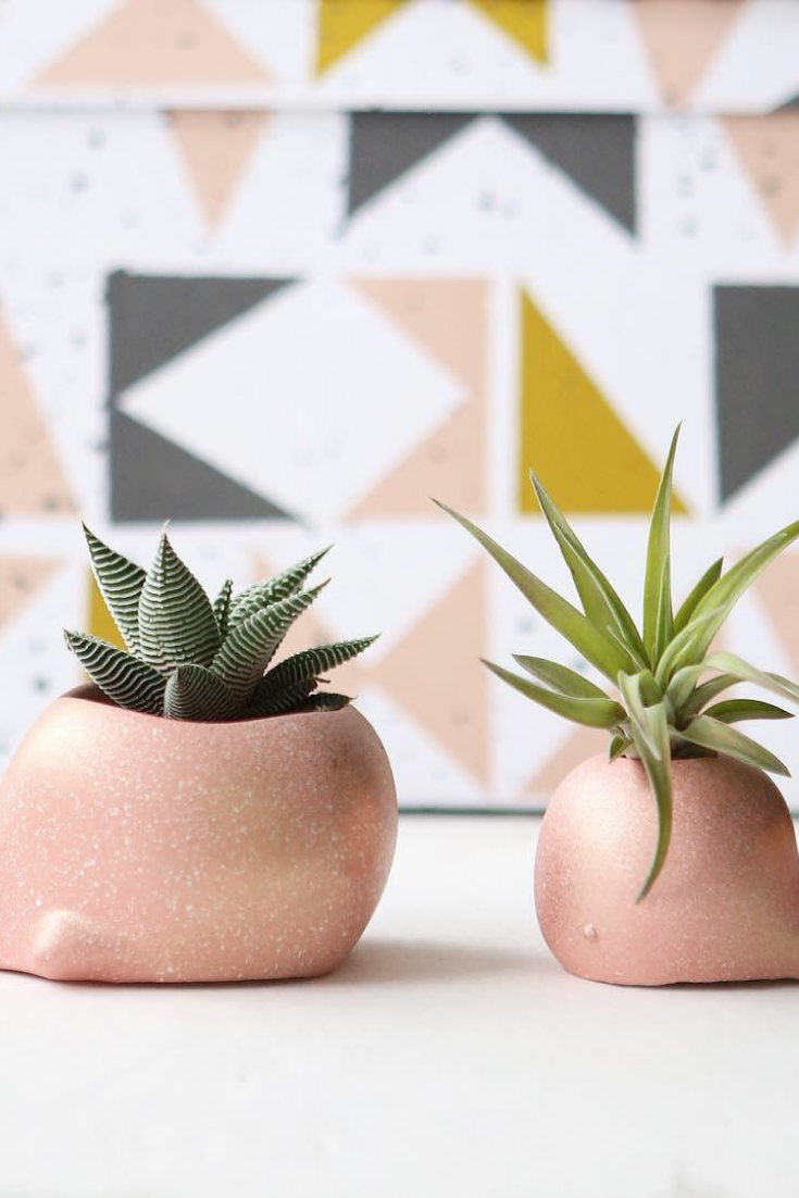 Modern Plant Life | handmade planters | pink whales | 5 things to give: Mother's Day Edition | Thoughtfully Handmade