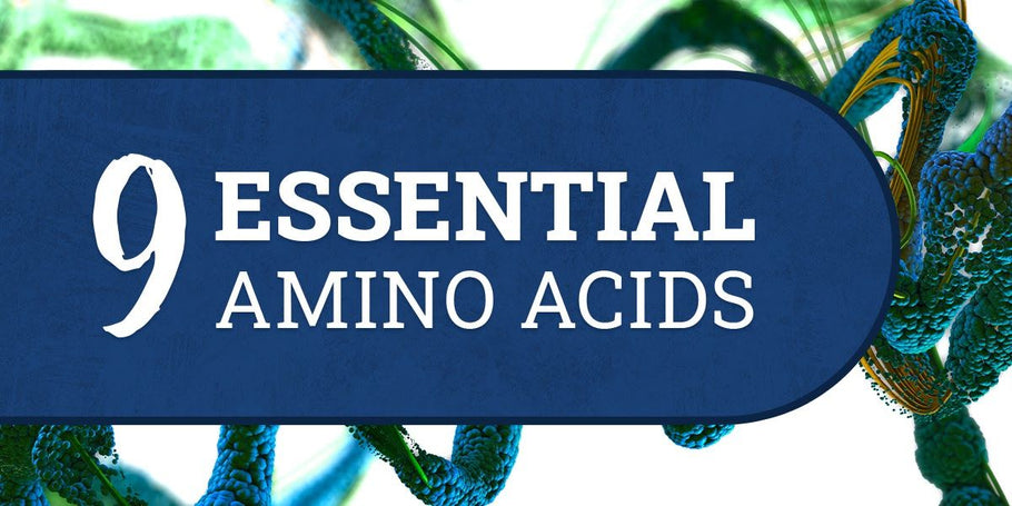 The 9 Essential Amino Acids (Health Guide) 2021