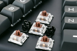 Gateron brown switches