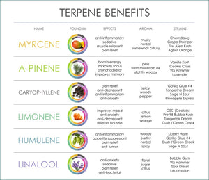 Terpene Infused CBD Products AVAILABLE NOW
