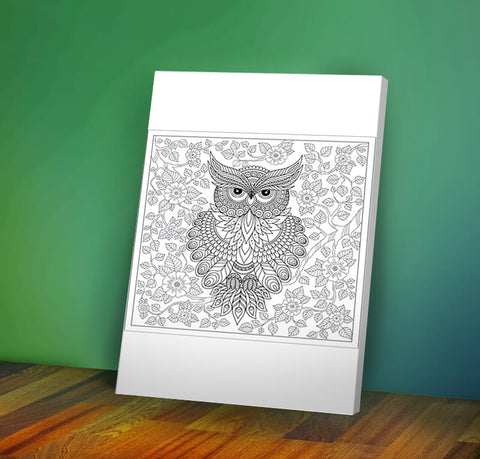 Owl #2 -  Coloring Canvas