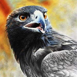 Eagle #5 - DIY Diamond  Painting