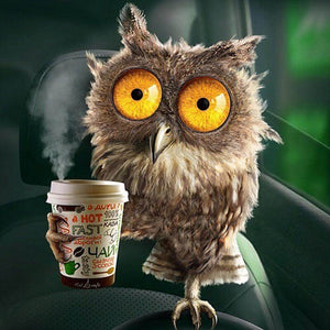 Owl drinking coffee - DIY Diamond Painting