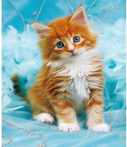 Image of diamond painting cat