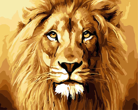 Lion - DIY Painting By Numbers