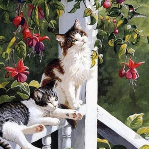 Image of Cats on the Balcony - DIY Painting By Numbers