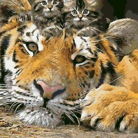 Image of Cats sitting on Tiger Head - DIY Painting By Numbers