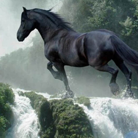 Image of Black Horse in Waterfalls - DIY Diamond Painting