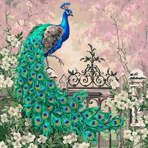 Image of Peacock - DIY Painting By Numbers