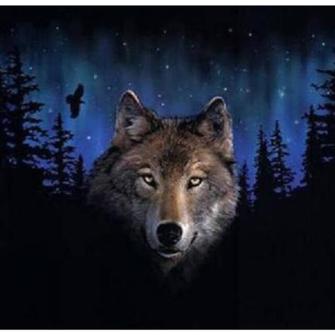 Wolf in the Dark - DIY Painting By Numbers