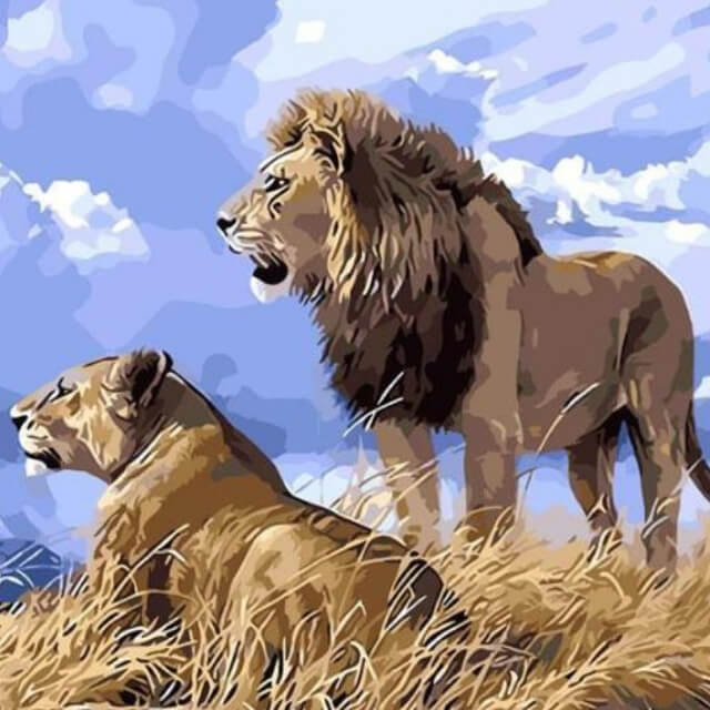 Lions in The Nature - DIY Painting By Numbers Kit