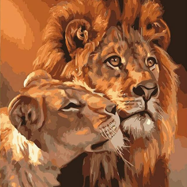 Lions -  DIY Painting By Numbers