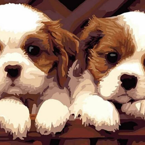 Image of Two Puppies -  DIY Painting By Numbers