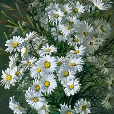 White Flowers - DIY Digital Painting By Numbers