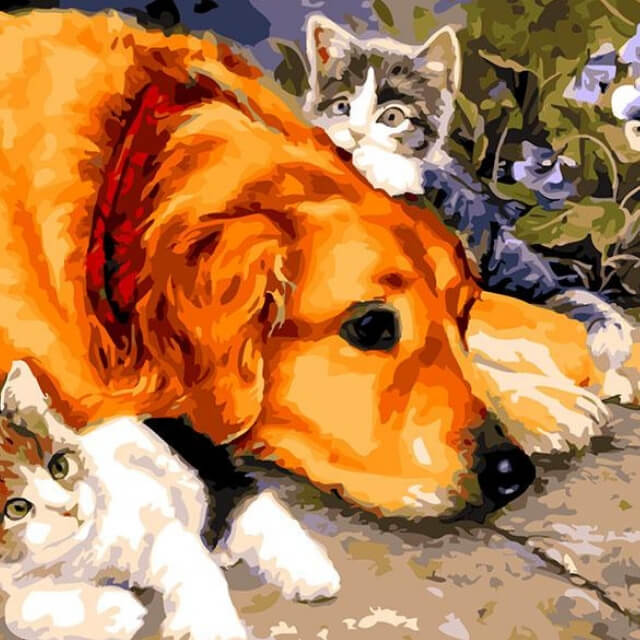 Dog with Cats - DIY Painting By Numbers