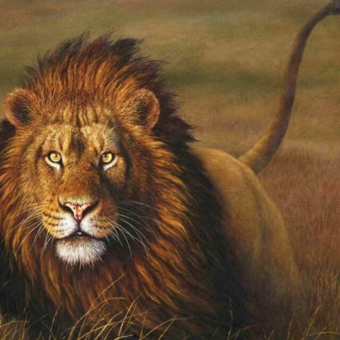 Lion in the Nature -  DIY Painting By Numbers