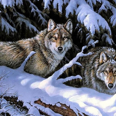 Image of Wolves in the Snow-  DIY Painting By Numbers