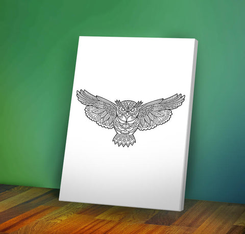 Owl #1 -  Coloring Canvas