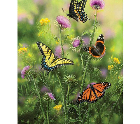 Image of Butterfly in the fields - DIY Diamond  Painting